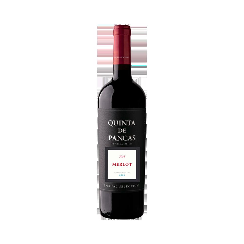 Quinta de Pancas Special Selection Merlot - Rotwein