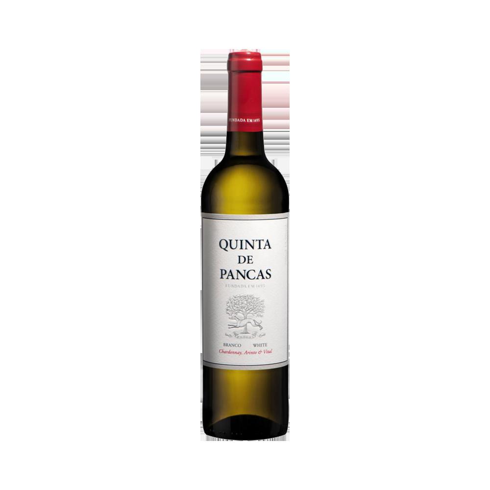Quinta de Pancas - Weißwein