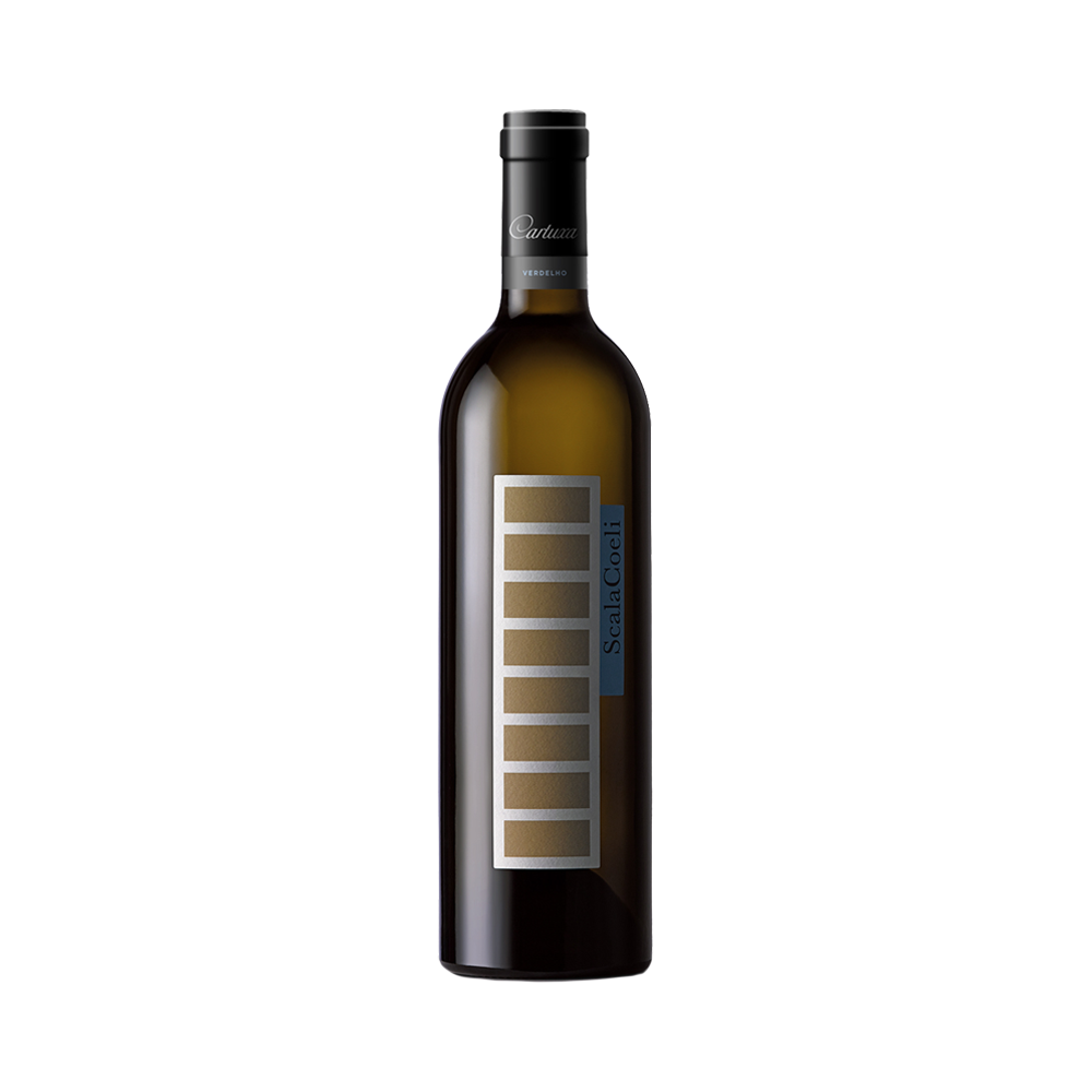 Scala Coeli - Weißwein